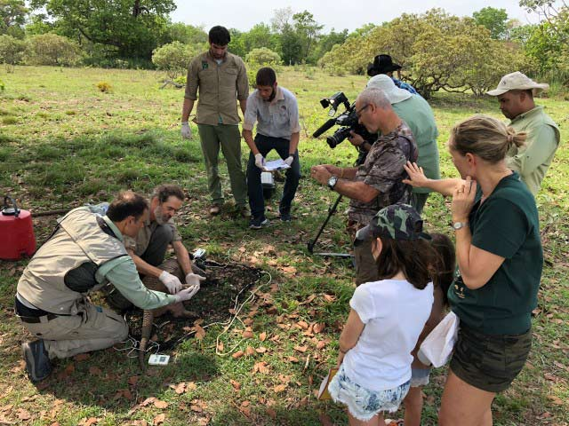 The Giant Armadillo Conservation Team are joined by a nature TV film crew